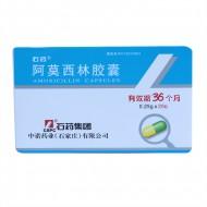 石药  阿莫西林胶囊  0.25g*20粒