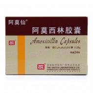 阿莫仙 阿莫西林胶囊 0.25g*24粒