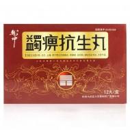 乾坤 蠲痹抗生丸 12粒